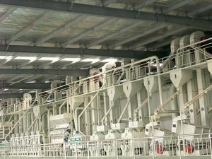 80吨大型碾米机组
